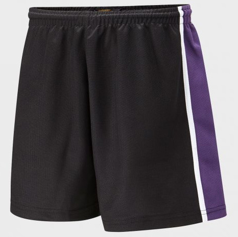 Bedford Free School Panelled Sports Short
