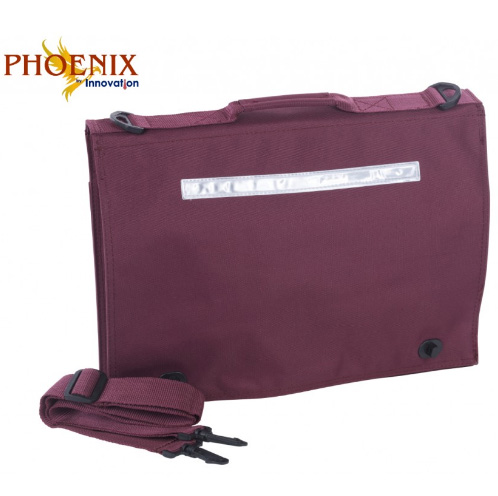 PHOENIX DOCUMENT CASE